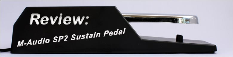 Side view of the M-Audio SP2 sustain pedal.